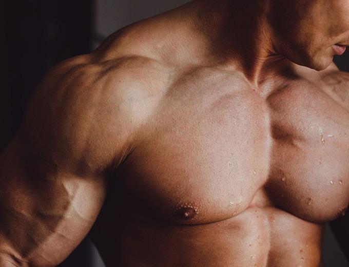 Плечи и грудные мышцы