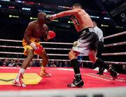 Гвоздик стал Открытием года по версии Всемирного боксерского совета