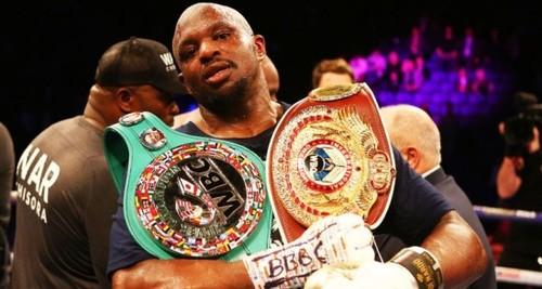 WBC санкционировал бой Уайта против Бризила