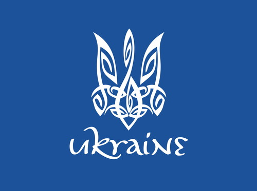 Федерація міні-футболу України обрала нового віце-президента