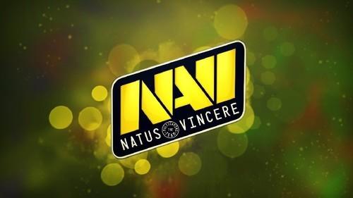 Матчи Na'Vi смотрели чаще всех среди СНГ-организаций