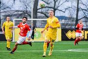 Матчи Украина - Швейцария посмотрело почти 45 тысяч болельщиков