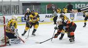 Анонс восьмого тура Украинской хоккейной лиги