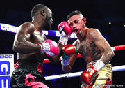 Mikey Williams / Top Rank
