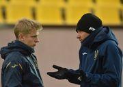 Украина — Литва. Прогноз и анонс на матч отбора на Евро-2020