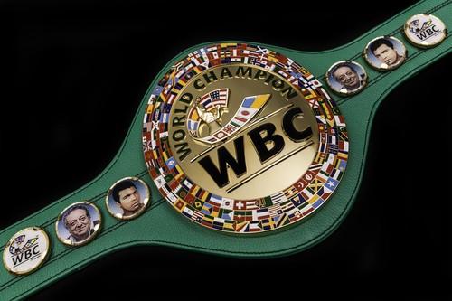 В Украине официально признали WBC