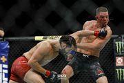 ВИДЕО. UFC 244. Лучшие моменты турнира