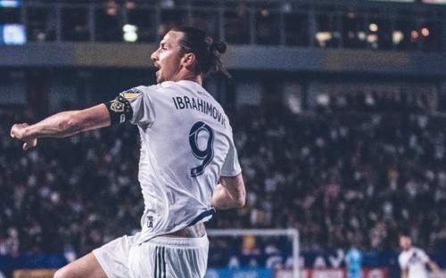 Ибрагимович может остаться в Лос-Анджелес Гэлакси