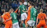 Північна Ірландія – Нідерланди – 0:0. Огляд матчу