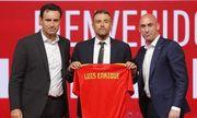 Луис Энрике может вернуться в сборную Испании