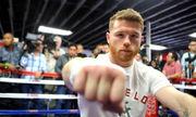 Альварес не обязан боксировать с Деревянченко