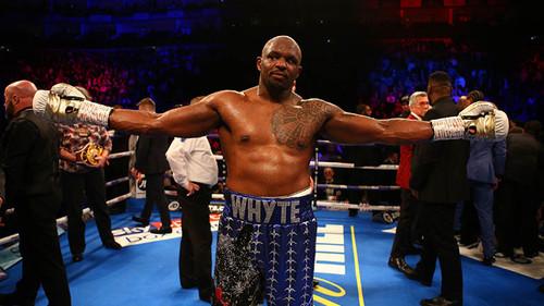 Уайт победил Ваха единогласным решением судей