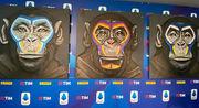 Обезьяны на антирасистских плакатах: клубы Серии A удивлены подходом
