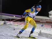 Лінн ПЕРССОН: «Сервісмени підготували відмінні лижі для збірної Швеції»