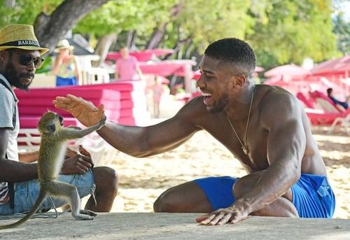 ФОТО. Новая пассия! Джошуа развлекается на пляже с подругой и обезьянкой