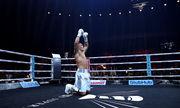 Календарь боев украинцев 2020 в боксе: Усик, Ломаченко, Постол и другие