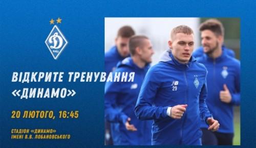 Динамо перед возобновлением сезона проведет открытую тренировку