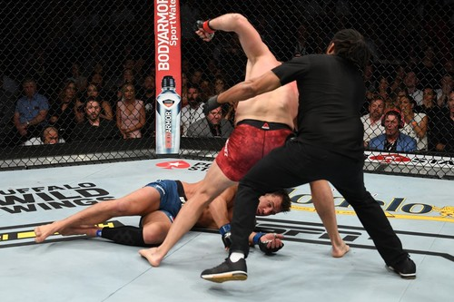 UFC. Ян Блаховіч - Люк Рокхолд. Відео страшного нокауту