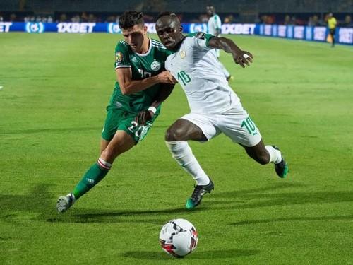 Где смотреть финал Кубка африканских наций Сенегал – Алжир