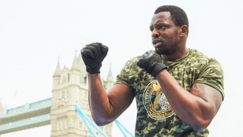ХИРН: «Уайту не стоит драться с Усиком до боя с Уайлдером или Фьюри»