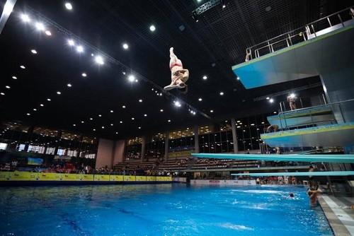 Киев готовится принять чемпионат Европы по прыжкам в воду
