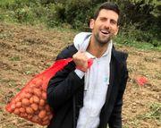 ФОТО. Як Джокович збирав урожай картоплі в селі