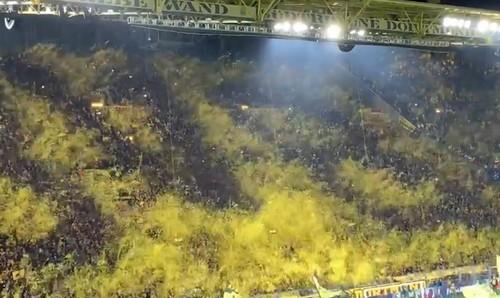 ВИДЕО. Яркий перфоманс болельщиков Боруссии на матче с Барселоной