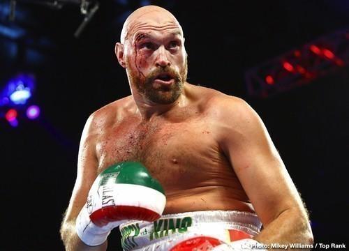 5 самых успешных среди больших боксеров в истории