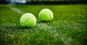 Глава ATP: «Трав'яний сезон поки залишається в тенісному календарі»