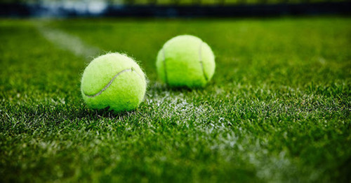 Глава ATP: «Травяной сезон пока остается в теннисном календаре»