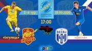 Ингулец - Десна. Прогноз и анонс на матч чемпионата Украины