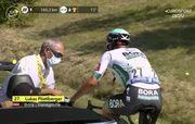 Укусила пчела в рот. Велогонщик отправился с Тур де Франс прямо в госпиталь