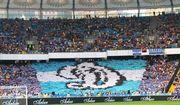 Динамо попросило болельщиков потерпеть