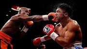 Що значить панчер в боксі?