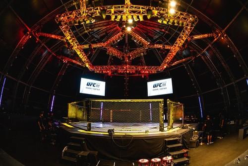 ВИДЕО. Американка жестко нокаутировала россиянку на UFC 254