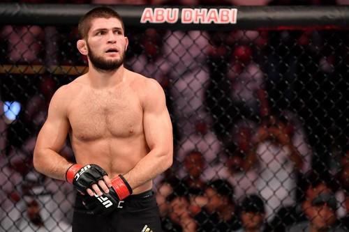Хабиб и еще 6 самых популярных бойцов UFC в Украине