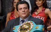 WBC придумал название для нового дивизиона. В нем может боксировать Усик