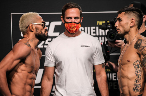 UFC 255: Дейвисон Фигейреду – Алекс Перес. Смотреть онлайн. LIVE трансляция