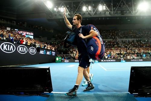 Энди Маррей получил уайлд-кард на Australian Open