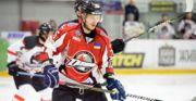 Чехия – Австрия: прогноз на матч Андрея Сигарева