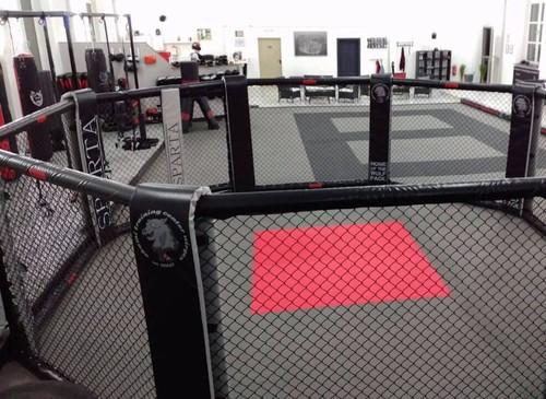В результате драки в Дагестане погиб боец MMA