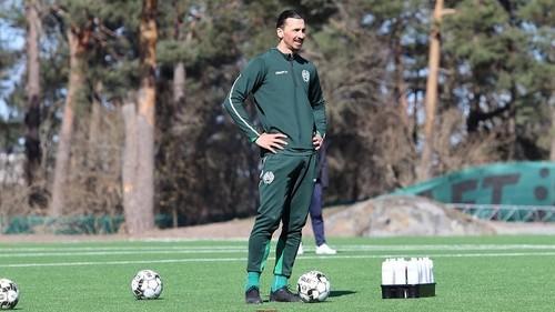 Ибрагимович может продолжить карьеру в Хаммарбю