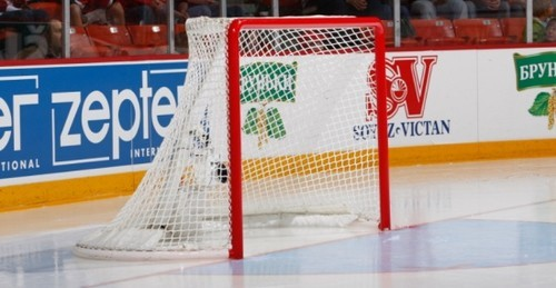 Чемпионат Германии по хоккею отменен из-за коронавируса