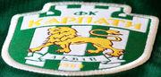 Позиция Карпат: клуб не будет оспаривать техническое поражение