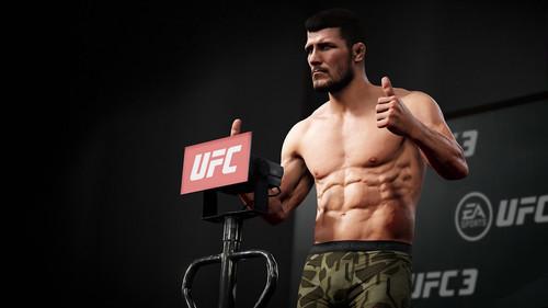 EA Sports назвала дату выхода файтинга UFC 4