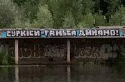 Динамо без Суркісів. Ультрас клубу запустили хештег та намалювали графіті