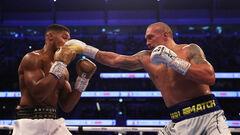 Чемпион мира: «Джошуа сделал все, что мог в бою с Усиком»
