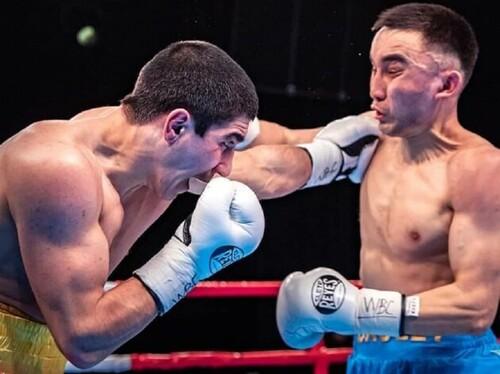 ВИДЕО. За пояс WBC Asia. Украинский Танк победил боксера из Казахстана