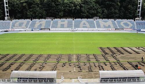 Динамо проведет реконструкцию полей на базе и на стадионе им. Лобановского