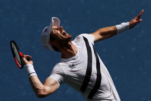 Маррей не сыграет на Australian Open: известна причина